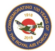 Royal Air Force 100 Years Roundel Pin