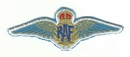 RAF Wings Ebroidered Badge